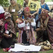 La bendición de las alpacas en Bolivia